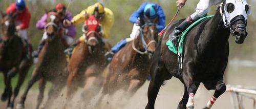 شرط بندی روی مسابقات اسب سواری