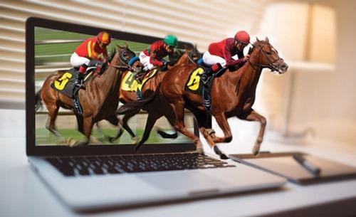 سوالات متداول در مورد شرط بندی مسابقات اسب سواری