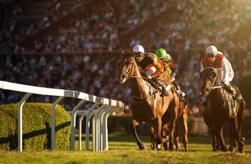 شرط بندی مسابقات اسب دوانی