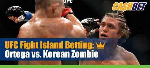 بهترین سایت های شرط بندی UFC